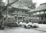 Ceremony at Kioto